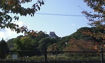 彦根5.JPG